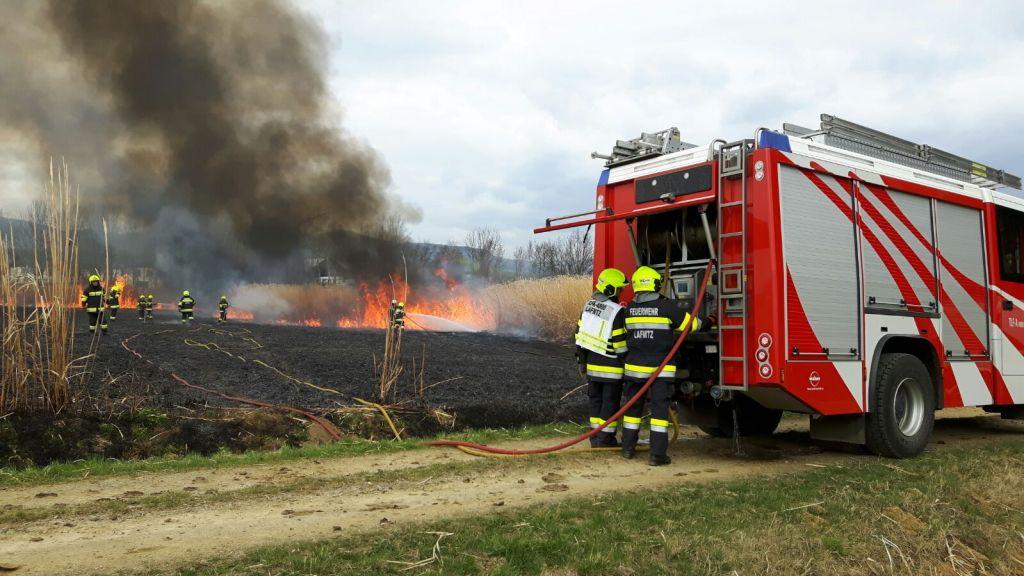 Großflächenbrand in Seibersdorf